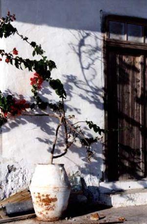 Typical Doorway with Plants in Pots Skiathos