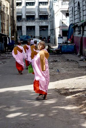 Young Buddhist Nuns in Central Yangon