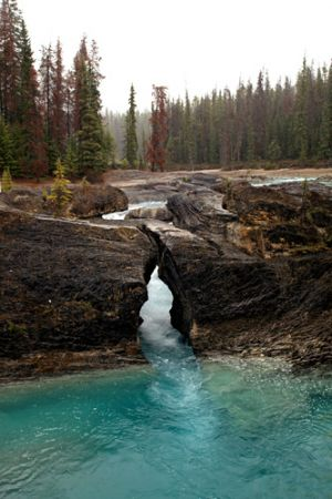 Natural Bridge at Kicking Horse River  Yoho National Park