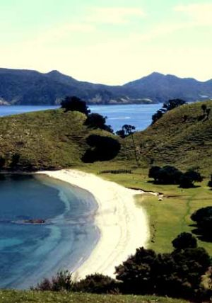 Urupekapeka Beaches Bay of Islands