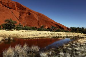 Uluru Reflection After Rain