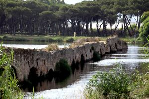 Roman Bridge Fertilia