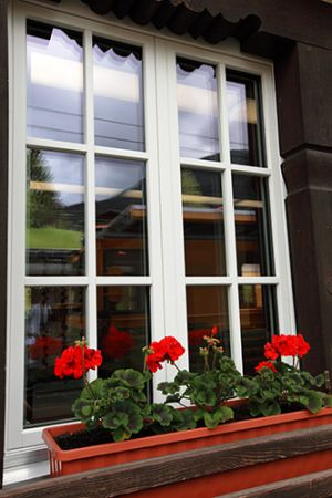 Red Geranium Window Box Train Station at Grund