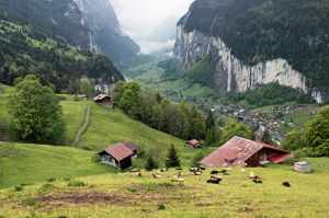 Swiss Countryside in Wengen Area
