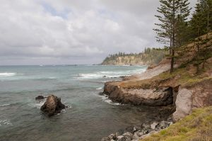 Landscape Of The Rocky Coastline Norfolk Island