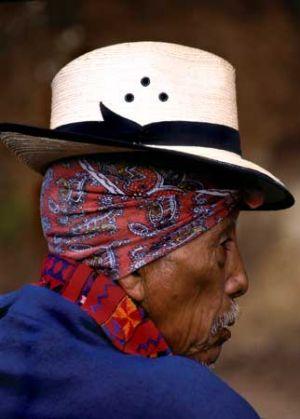 Todos Santos Elder