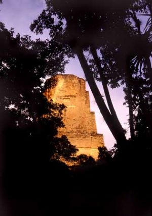 Sunset in Ancient Mayan Ruins at Tikal