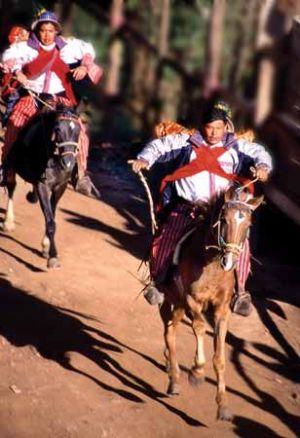 Annual Todos Santos Horse Race