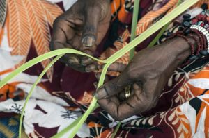 Yolungu Weaving in Nhulunbuy
