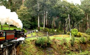 Puffing Billy an Original  Steam Train in Dandenongs