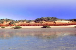Roebuck Bay Coast Broome