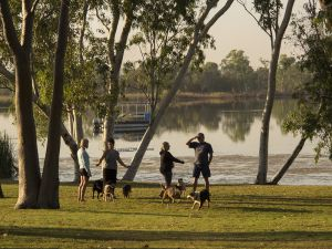 Lake Kununurra Dog Exercise