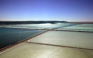 Exmouth Salt Salt Pans