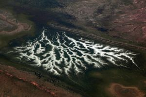Aerial River Patterns in Central Australia