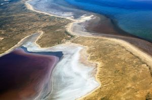 Lake Eyre North in Flood