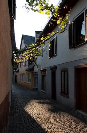 Rudesheim Street  Early In The  Morning