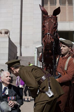 War Horse and Veteran